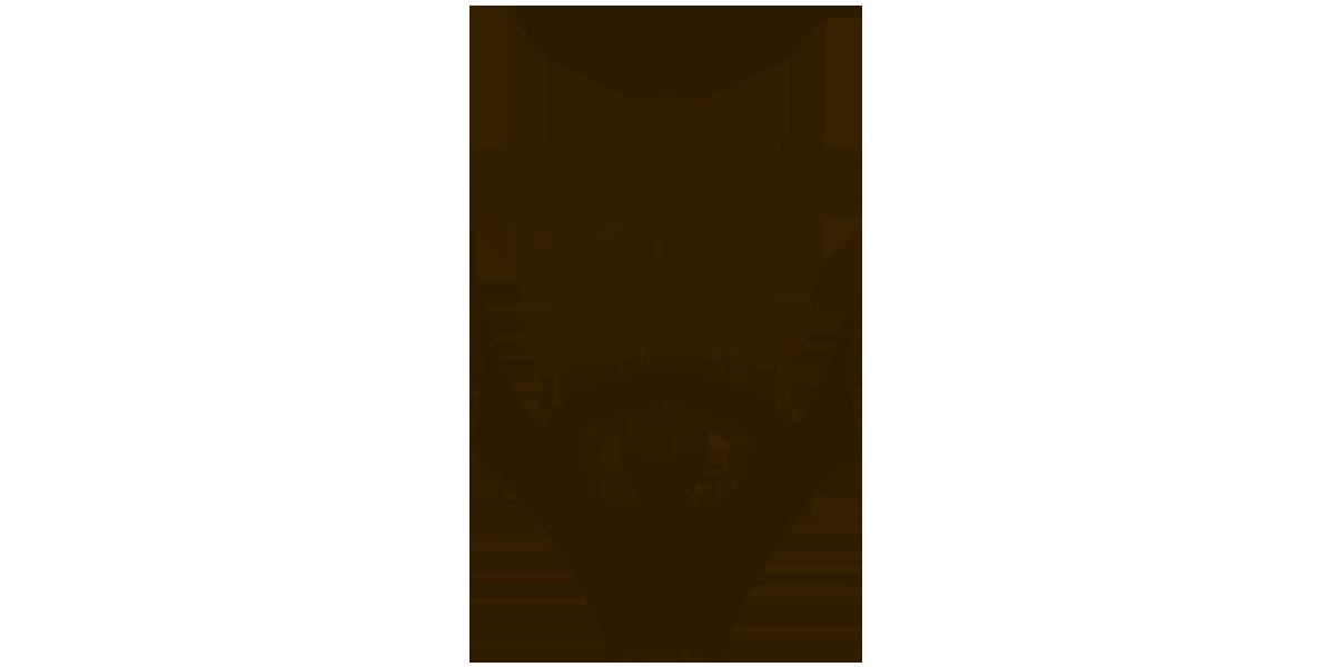 maynartdesign_cliente_studio-arts
